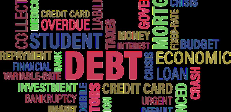 VENTURE DEBT 5 (1)